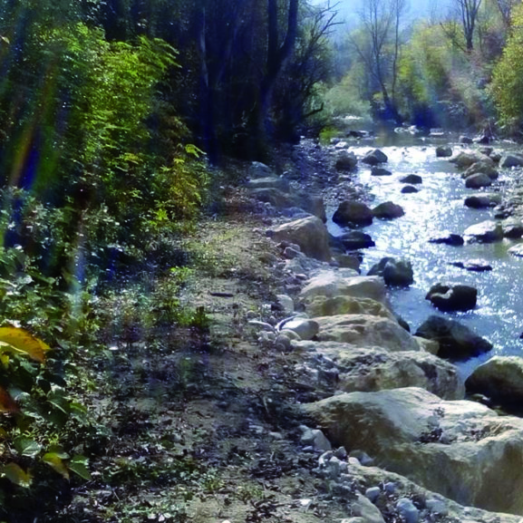 CONTINUITE ECOLOGIQUE Végétalisation en cours (Seuil du Revol – SIAGA) et diversification des écoule